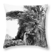 Italy: Florence, C1875 Throw Pillow