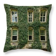 Ivy League Throw Pillow by John Greim