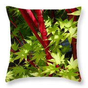 Japanese Maple Tree Throw Pillow