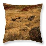 John Day Painted Hills Throw Pillow