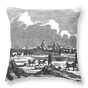 John Franklin Expedition Throw Pillow