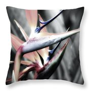 Kauai Paradise Throw Pillow