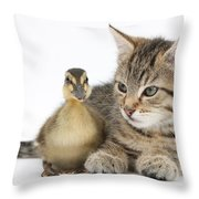Kitten And Duckling Throw Pillow