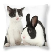 Kitten And Dutch Rabbit Throw Pillow