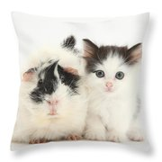 Kitten And Guinea Pig Throw Pillow