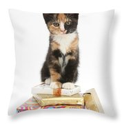 Kitten On Packages Throw Pillow