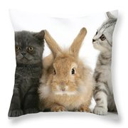 Kittens And Rabbit Throw Pillow