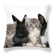 Kittens And Rabbits Throw Pillow