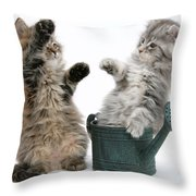 Kittens And Watering Can Throw Pillow