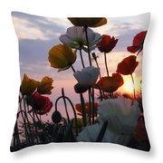 Lake Geneva Sunset Throw Pillow