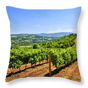 Landscape With Vineyard Throw Pillow