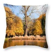 Lazienki Park Autumn Scenery Throw Pillow