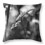 Lazy Afternoon Monochrome Throw Pillow