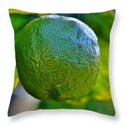Lemon On Tree Throw Pillow