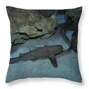 Leopard Shark Courting, Blue Zoo Throw Pillow