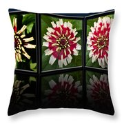 Life Of A Zinnia Throw Pillow