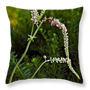 Lithe One Throw Pillow