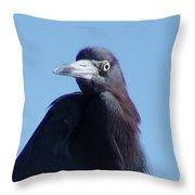 Little Blue Heron II Throw Pillow