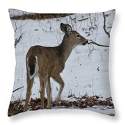 Little White Tail On The Move Throw Pillow