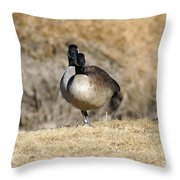 Look One Leg Throw Pillow