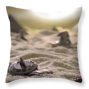 Lost Time Throw Pillow