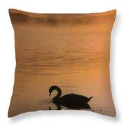 Lough Leane, Lakes Of Killarney, Co Throw Pillow