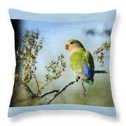 Lovebird  Throw Pillow