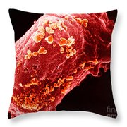 Lymphocyte With Hiv Cluster Throw Pillow by Science Source