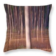 Magical Forest At Sunset Throw Pillow