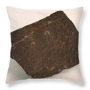 Magnetite Throw Pillow