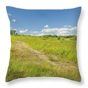 Maine Blueberry Field In Summer Throw Pillow