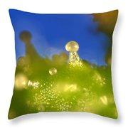 Microscopic View Of Cannabis Sativa Throw Pillow