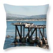 Monterey City Center Throw Pillow
