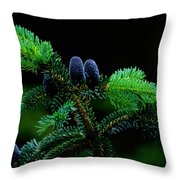 Mountain Life Throw Pillow