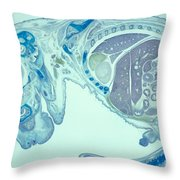 Mouse Embryo Throw Pillow