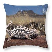 Namaqua Chameleon Chamaeleo Namaquensis Throw Pillow