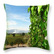 Napa Looking Out Throw Pillow