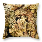 Natural Abstract 44 Throw Pillow