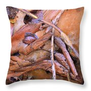 Natural Abstract 46 Throw Pillow
