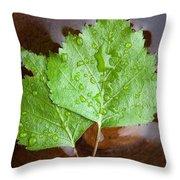 Natural Spa Throw Pillow
