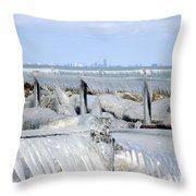 Natures Ice Sculptures 12 Throw Pillow