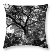 Nature's Network Throw Pillow