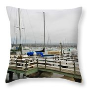 Newport Bay And Balboa Island Throw Pillow