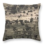 Ngorongoro Crater, Tanzania, Africa Throw Pillow by Carson Ganci