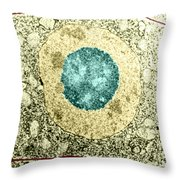 Normal Cell Throw Pillow