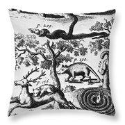 North America: Fauna Throw Pillow