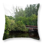 North Fork River Throw Pillow