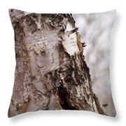 November Birch Throw Pillow