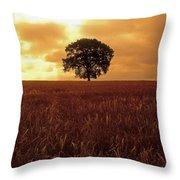 Oak Tree In A Barley Field, Ireland Throw Pillow
