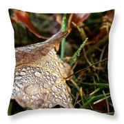 October Rain Drops Throw Pillow